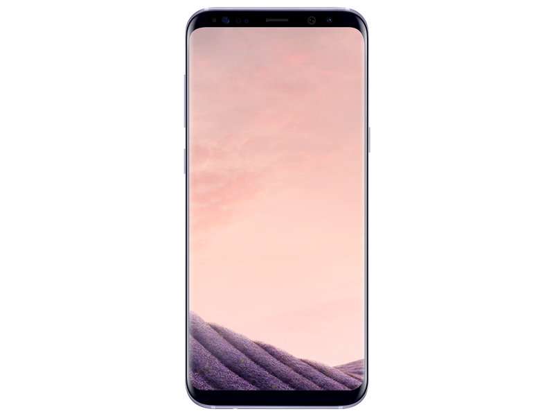 Samsung Galaxy S8+ (S8 Plus) 64GB Unlocked Phone (Orchid Gray) (Rent-to-Own)