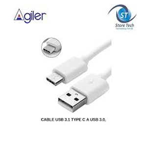AGILER USB 3.1 TYPE C TO USB CABLE IN 4 FT