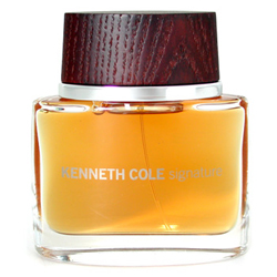 Kenneth Cole Signature for Men Cologne (100 ml)